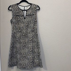 J Crew Leopard Print V-Neck Flounce Dress
